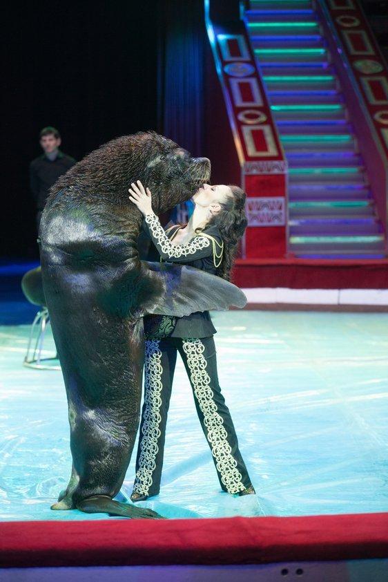 нежный кировский цирк арлекино фото море крови