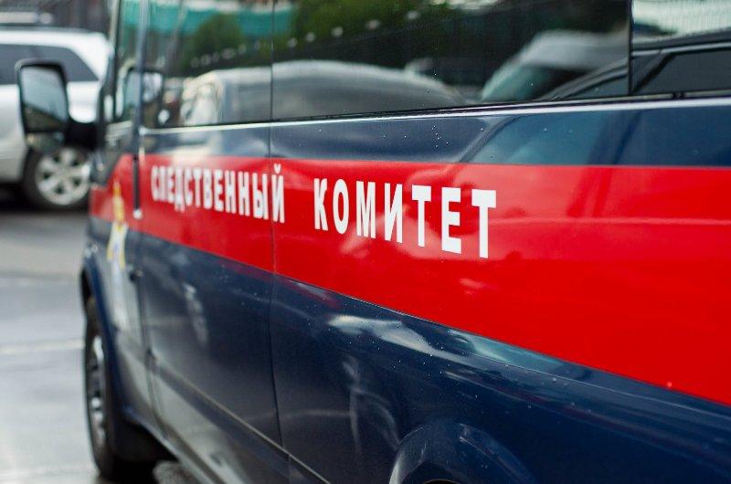 sledstvennyiy komitet В Кировской области пропал без вести 4-летний мальчик