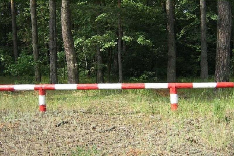 les 1 В Верхнекамском районе ограничено посещение лесов