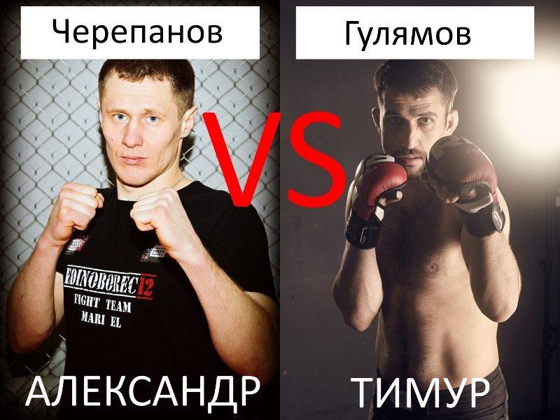 В Кирове пройдет турнир по смешанным единоборствам