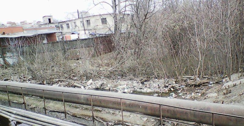 Река Хлыновка утопает в мусоре (+ФОТО)