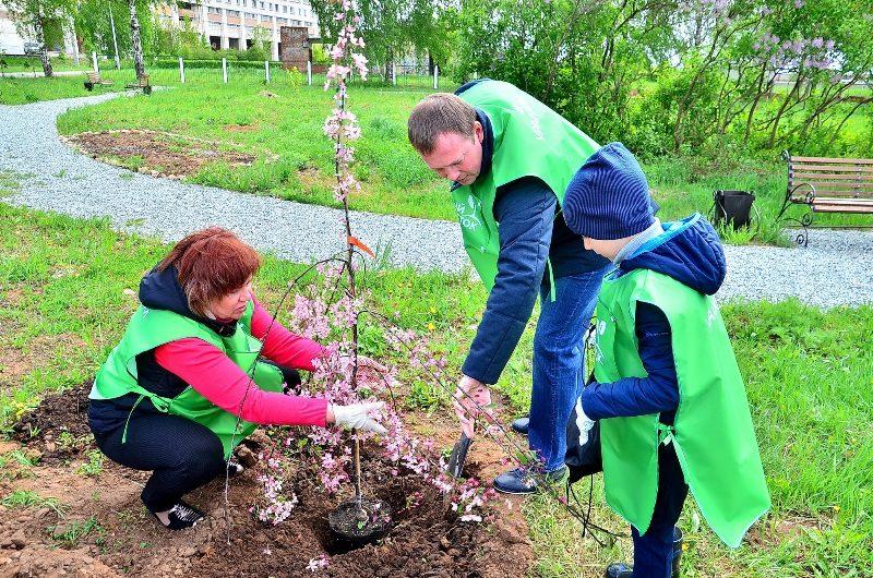 Экологическая акция «Добрый росток» прошла в Кирово-Чепецке при поддержке «УРАЛХИМа»