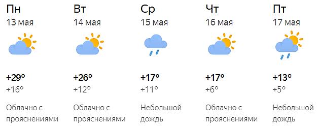 Синоптики рассказали, когда в Кирове спадет аномальная жара