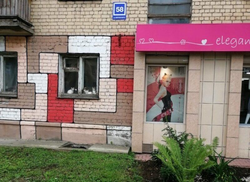 Кировчанка устроила из квартиры помойку, а ее кошки живут между рамами (+ФОТО)