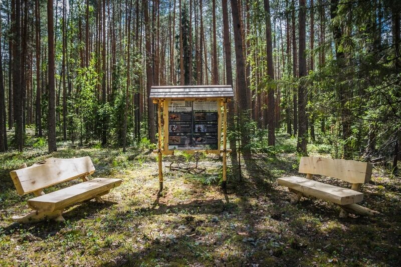 Реликтовый лес, чистые озера и песчаные дюны: в области открыли экотропу (+ФОТО)
