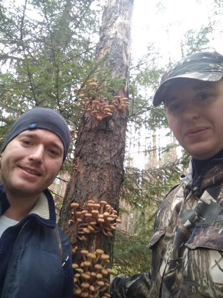 Кировчане нашли в лесу настоящий природный клад (+ФОТО)