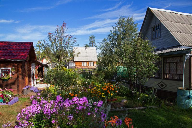 dacha sad ogorod В Нововятске из садового дома было украдено 36 тысяч рублей