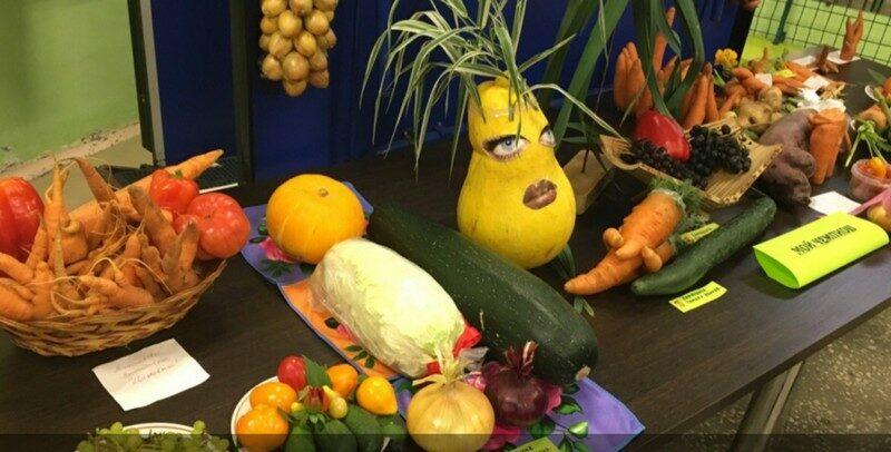 Кировчане продемонстрировали овощи причудливой формы