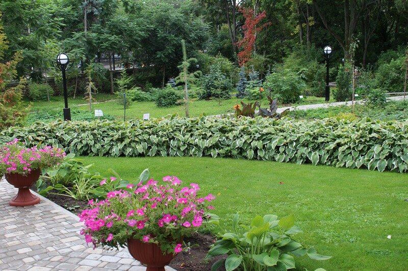 Стала известна дата, когда в Кирове закроют ботанический сад