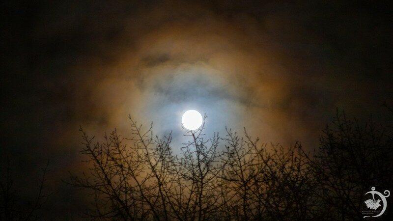 В Кировской области запечатлели пленительное атмосферное явление
