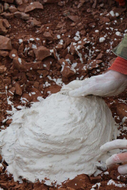 Кировские палеонтологи закрыли сезон новыми находками