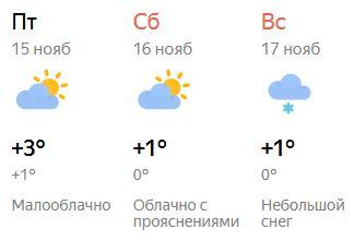 Аномально теплый ноябрь продолжается