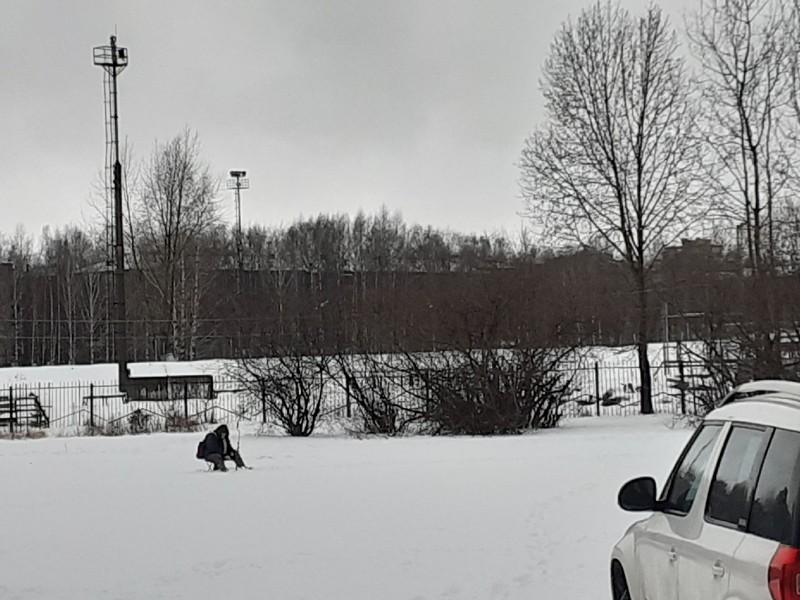 В выходные в Кирове слегка подморозит