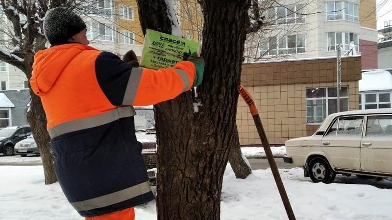 В Кирове демонтировано 142 незаконно установленных рекламных конструкций