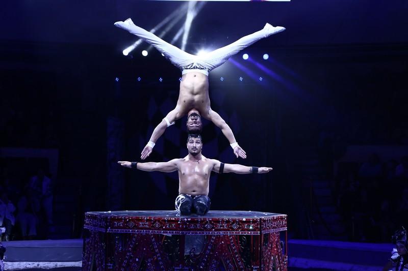 В Кировском цирке покажут шоу мирового уровня