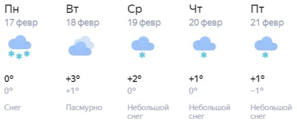 Середина февраля в Кирове: после снегопада придет весна