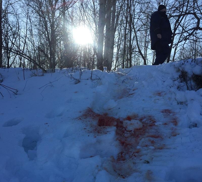 В Самаре задержан подозреваемый в убийстве жителя Кировской области