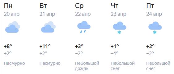 К концу недели в Кирове похолодает до +1 градуса