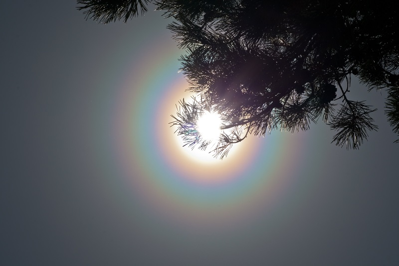 korona Жители Кировской области заметили необычные кольца на небе (+ФОТО)