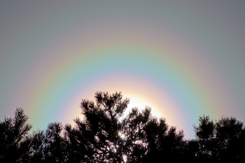 Жители Кировской области заметили необычные кольца на небе (+ФОТО)