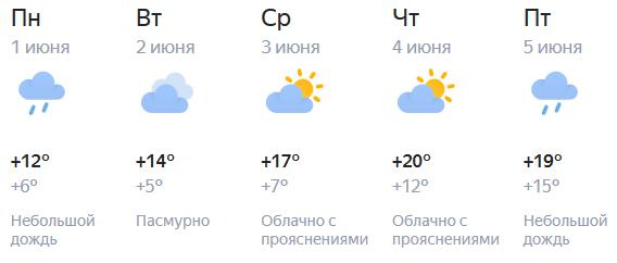 Синоптики рассказали, когда в Кирове начнётся потепление
