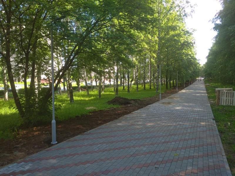 В Кирове благоустраивается пешеходная зона на бульваре по улице Ломоносова