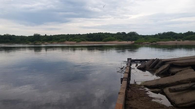 У посёлка Демьяново найдено тело 8-летнего мальчика