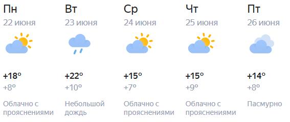 В Кирове продолжается прохладное лето