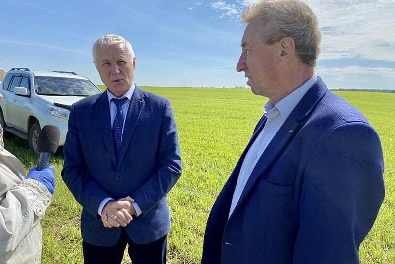 В Кировской области начался процесс заготовки кормов для животноводства региона