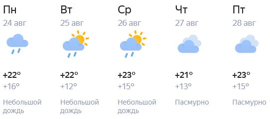 Погода продолжает радовать кировчан теплом