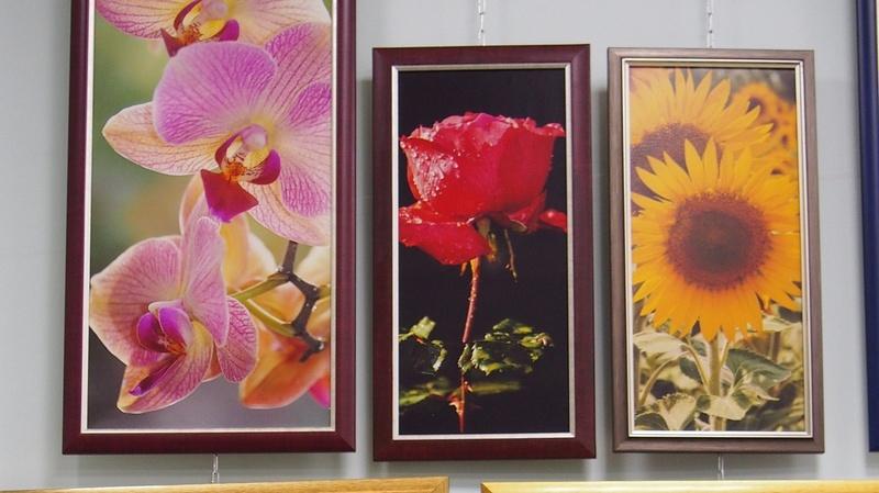 В кировской библиотеке открылась выставка фотолюбителя из Юрьи