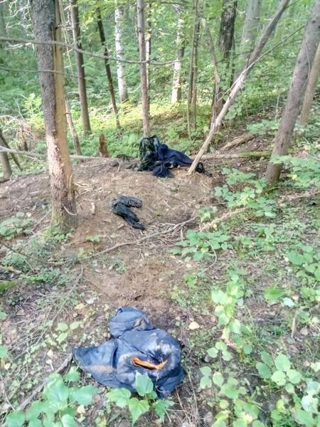 В Кировской области медведь съел человека
