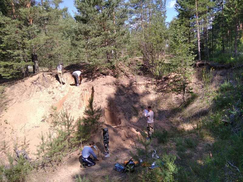 Сотрудники крупнейшего российского вуза обнаружили в Кировской области любопытные находки