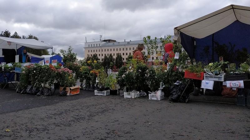 Кировчан приглашают на «Вятскую ярмарку»