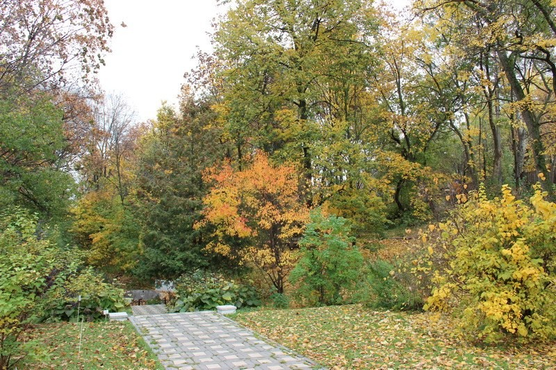 В Кирове закрывается ботанический сад