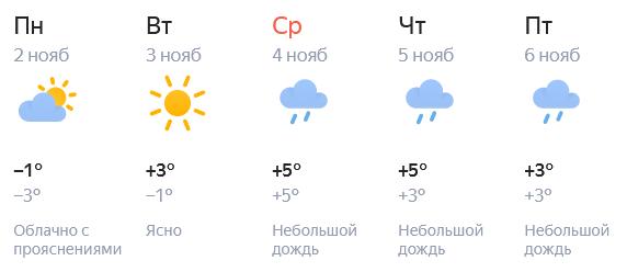 Ноябрь в Кирове начался с потепления
