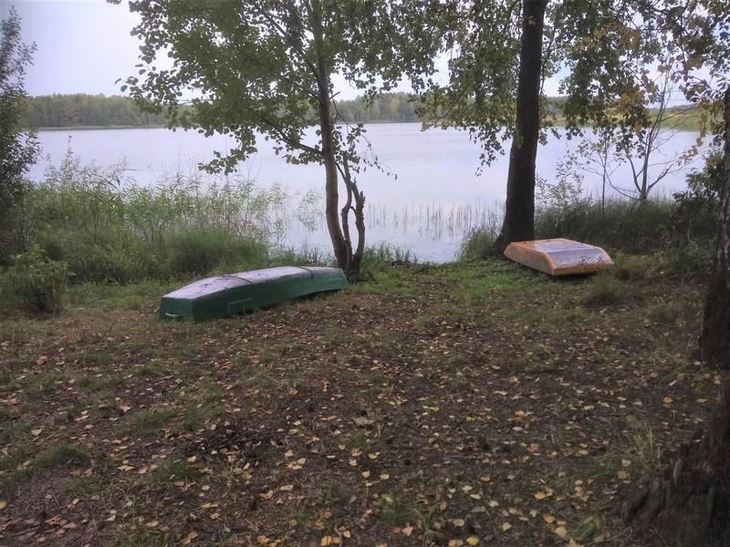 В Кировской области есть озеро, напоминающее огромного бегемота в лесу