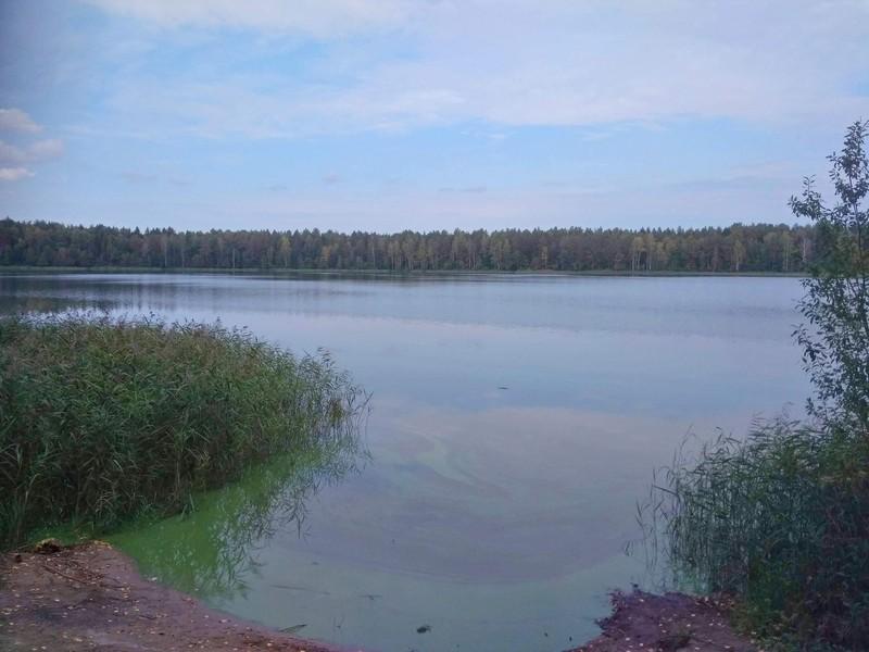 Akshuben1 В Кировской области есть озеро, напоминающее огромного бегемота в лесу