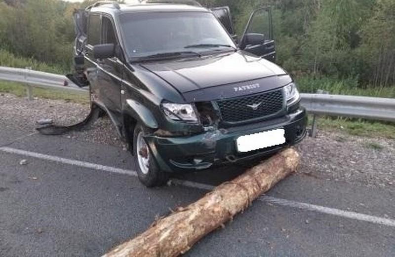 """На трассе """"Вятка"""" произошло смертельное ДТП с лесовозом"""