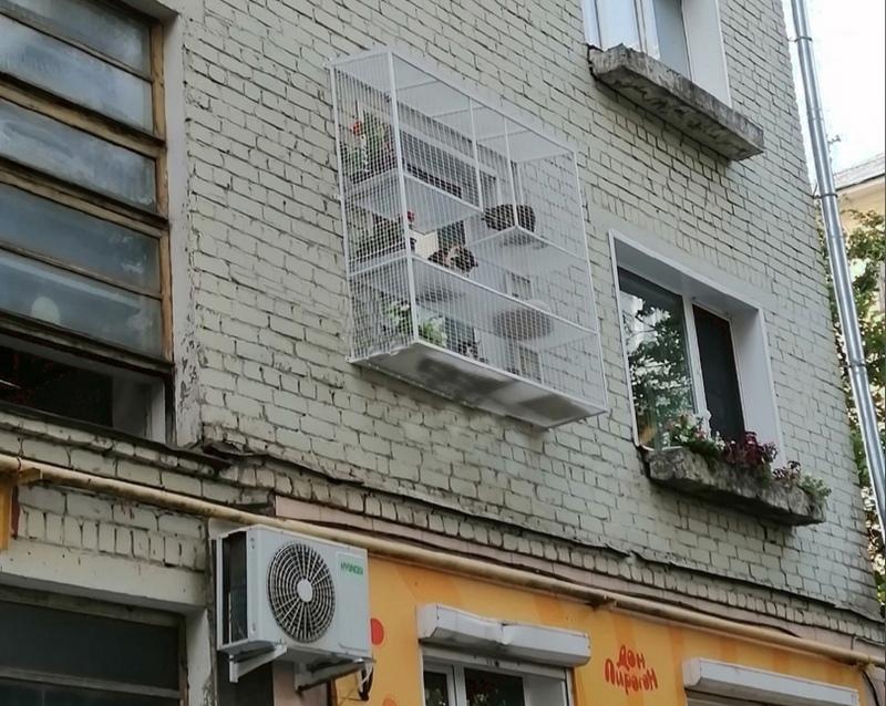 koshkin dom Кировчанин построил дом для котов прямо на фасаде здания