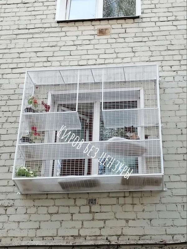Кировчанин построил дом для котов прямо на фасаде здания